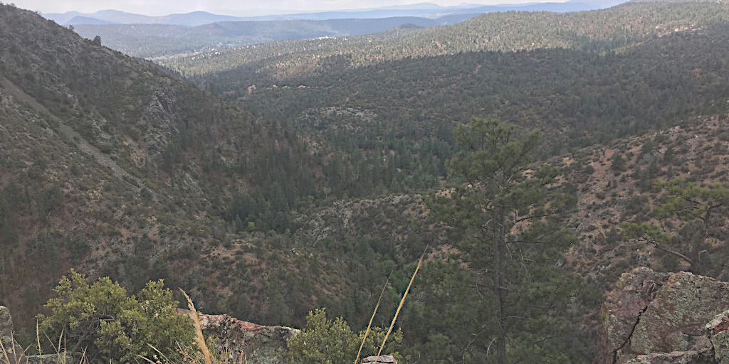 Bar X Grazing Allotment, Tonto National Forest
