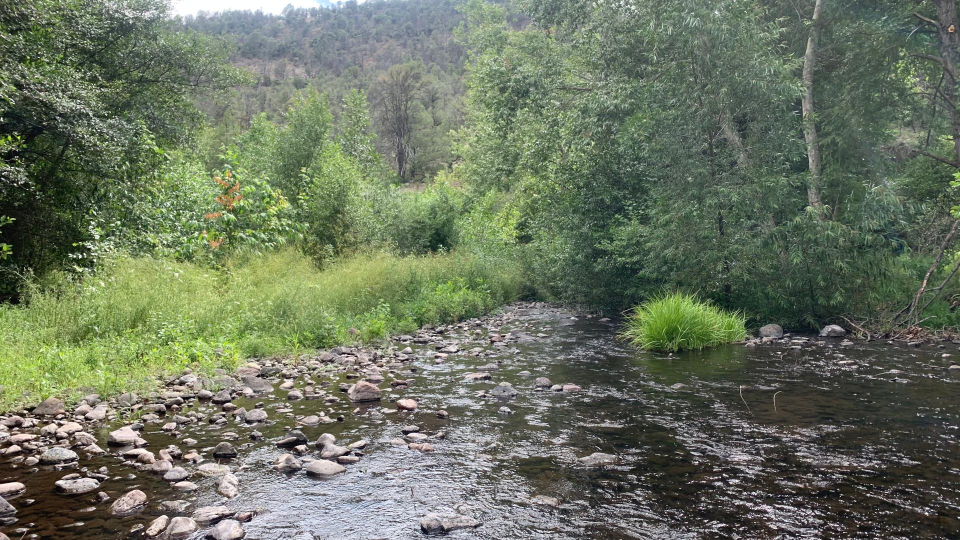 East Eagle Creek, August 2020